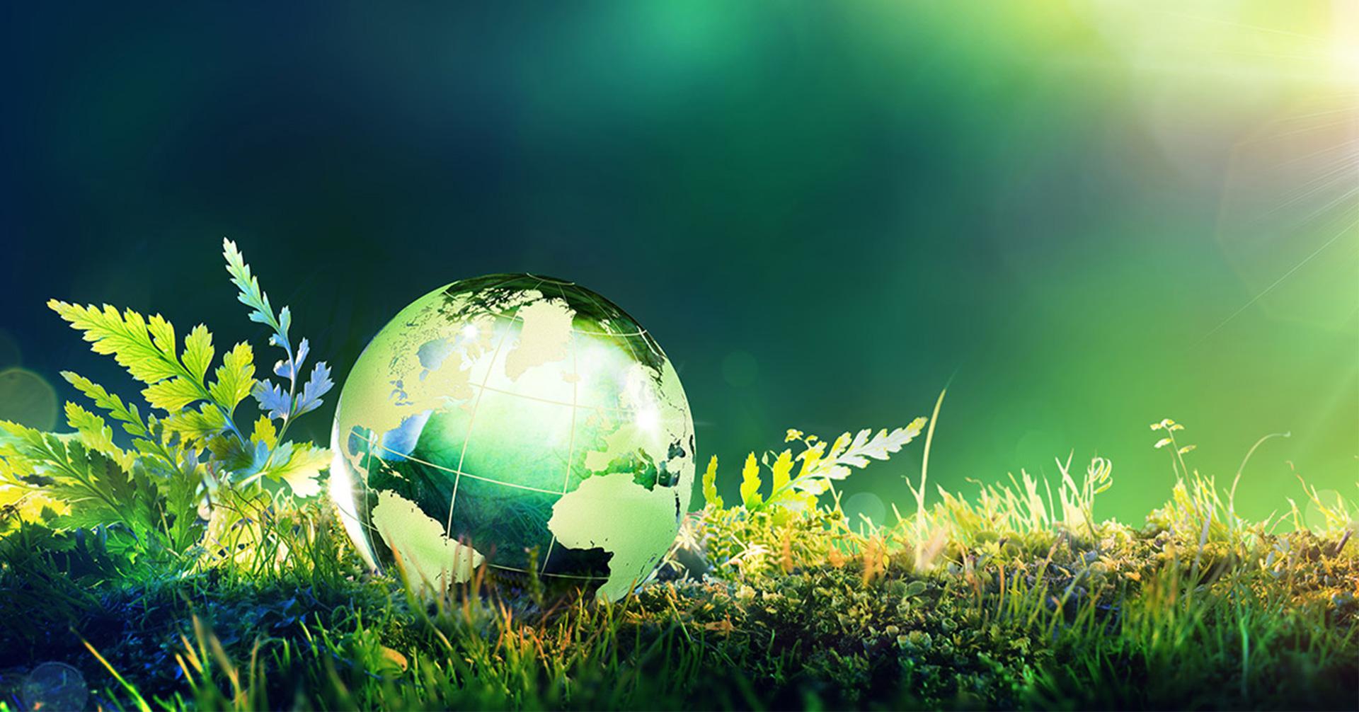 ICDT Environmental Management Programmes